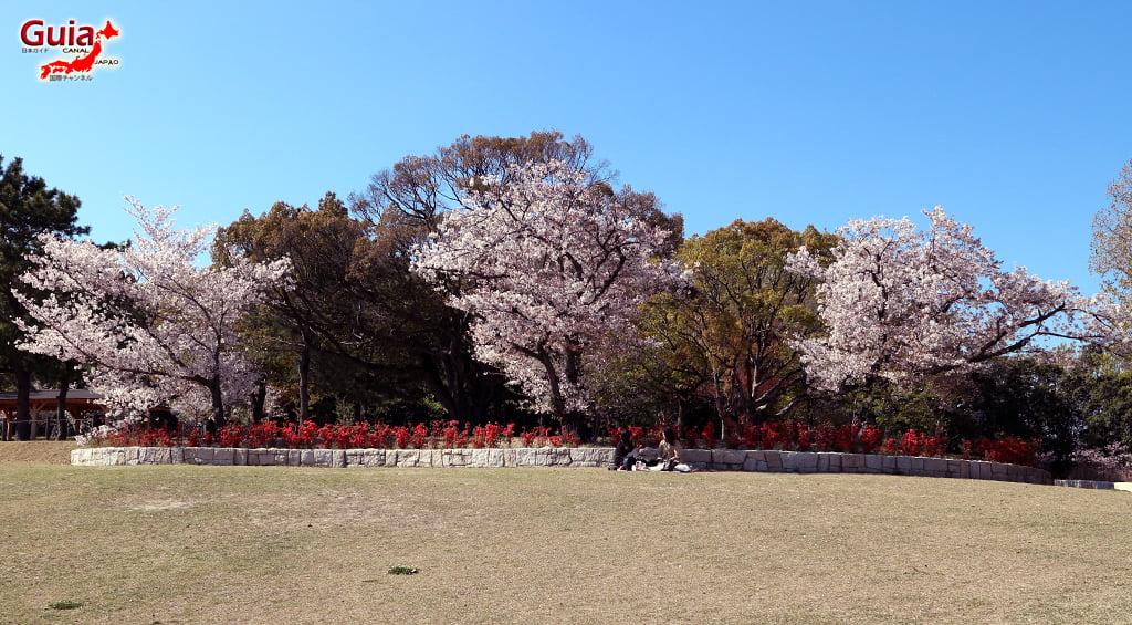 Сакура Сухара Парк - Кария 「洲 原 公園」 10