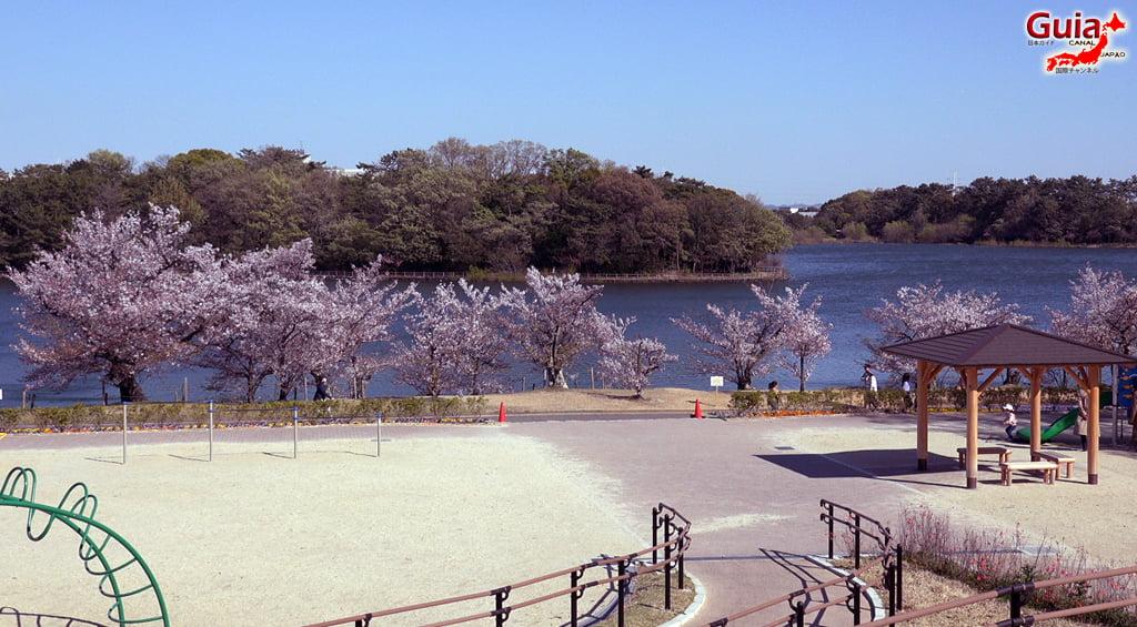 Сакура Сухара Парк - Кария 「洲 原 公園」 7