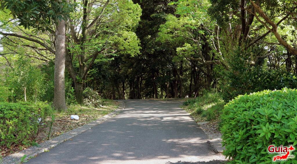 Обу Мидори цэцэрлэгт хүрээлэн 大 大 府 み ど り 公園 」12