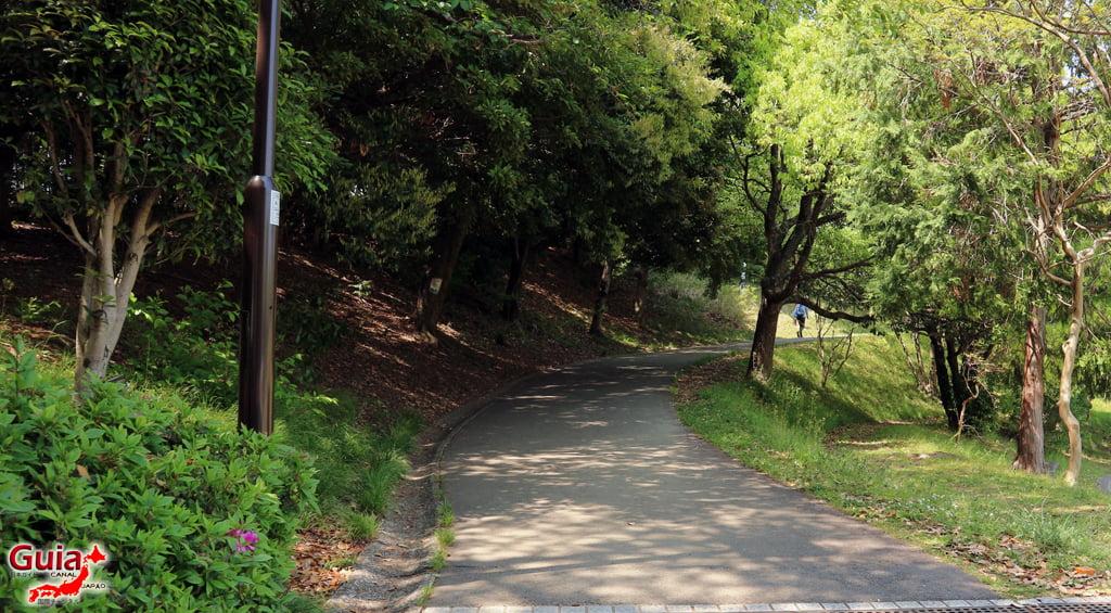 สวน Obu Midori 」大府みどり公園」 13