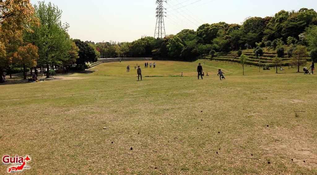 สวน Obu Midori 」大府みどり公園」 7