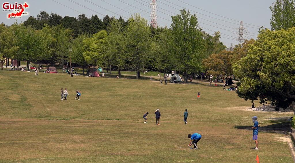 Obu Midori Park 「大 府 み ど り 公園」 8