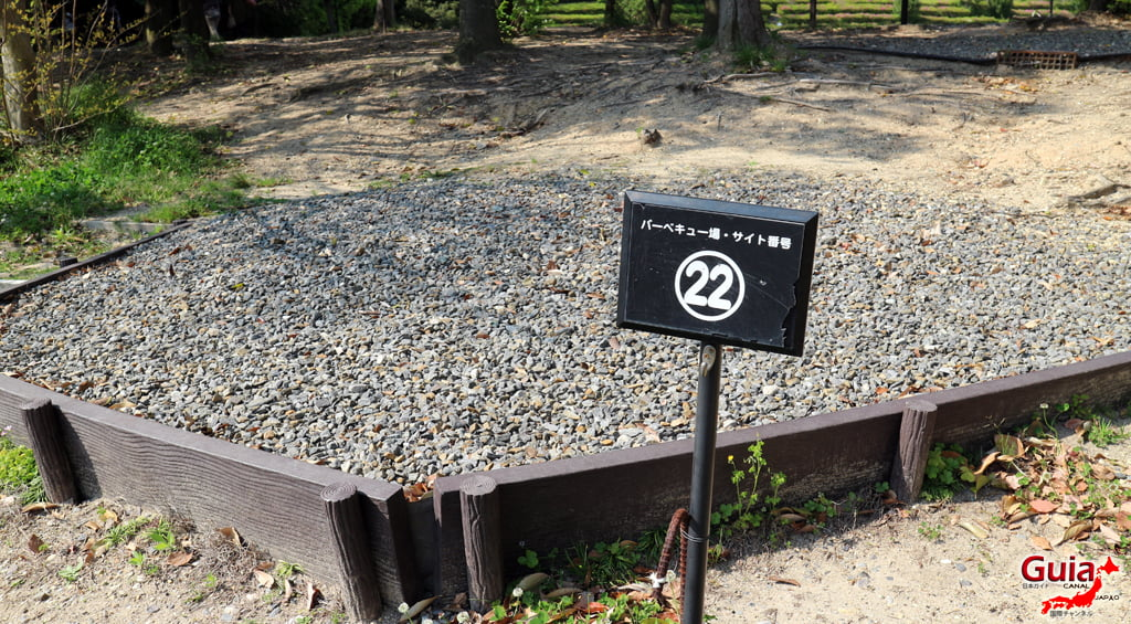 Обу Мидори цэцэрлэгт хүрээлэн 大 大 府 み ど り 公園 」49