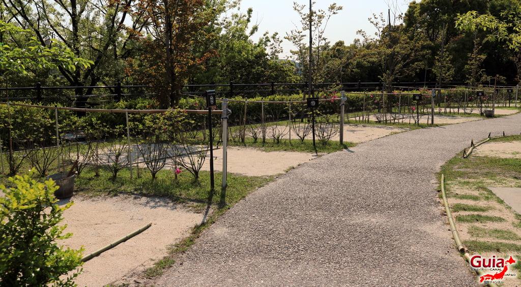 Обу Мидори цэцэрлэгт хүрээлэн 大 大 府 み ど り 公園 」46