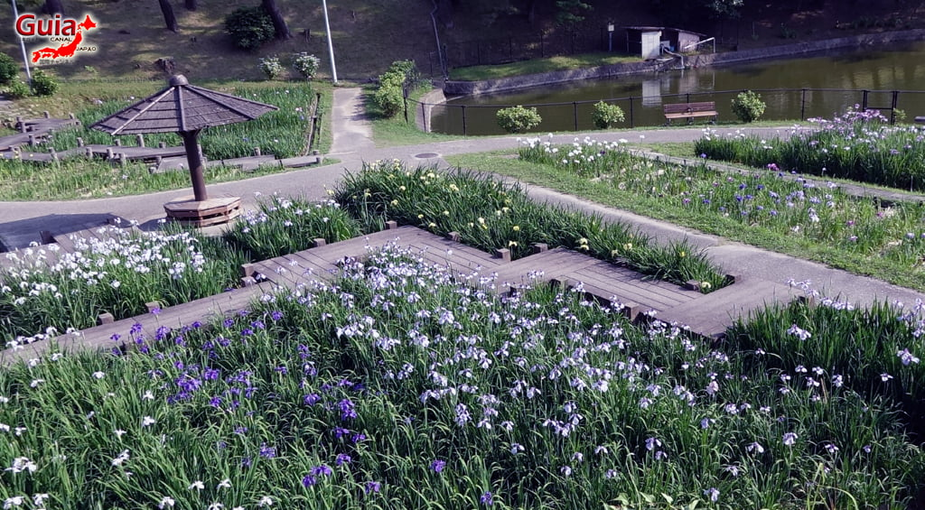 Parque Leste de Okazaki – Higashi Koen & Zoológico 41
