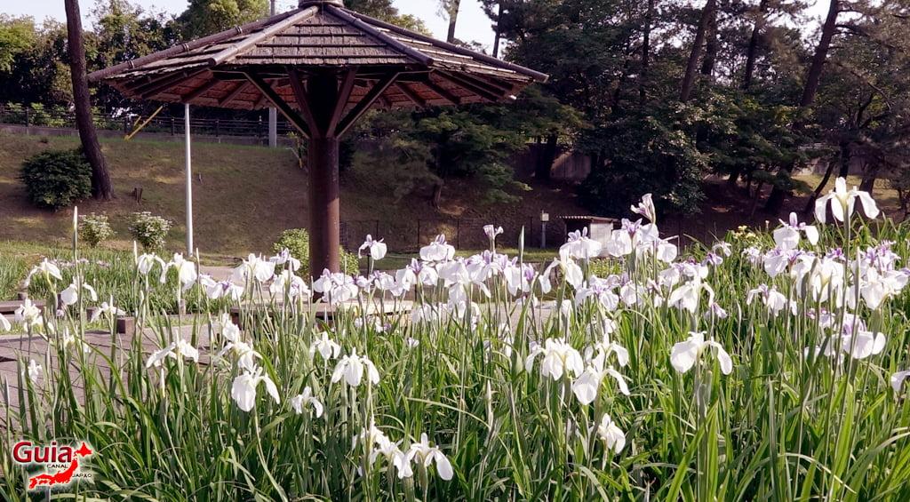 Parque Leste de Okazaki – Higashi Koen & Zoológico 49