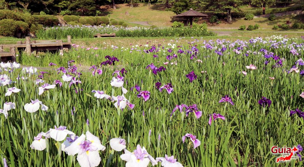 Parque Leste de Okazaki – Higashi Koen & Zoológico 53