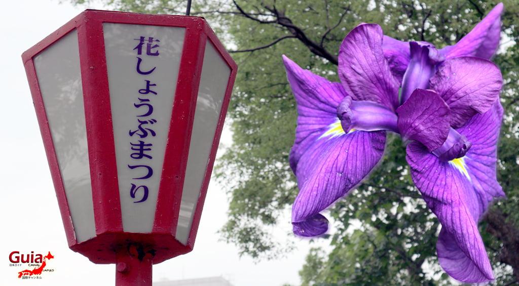 Iris Hekinan наадам 2
