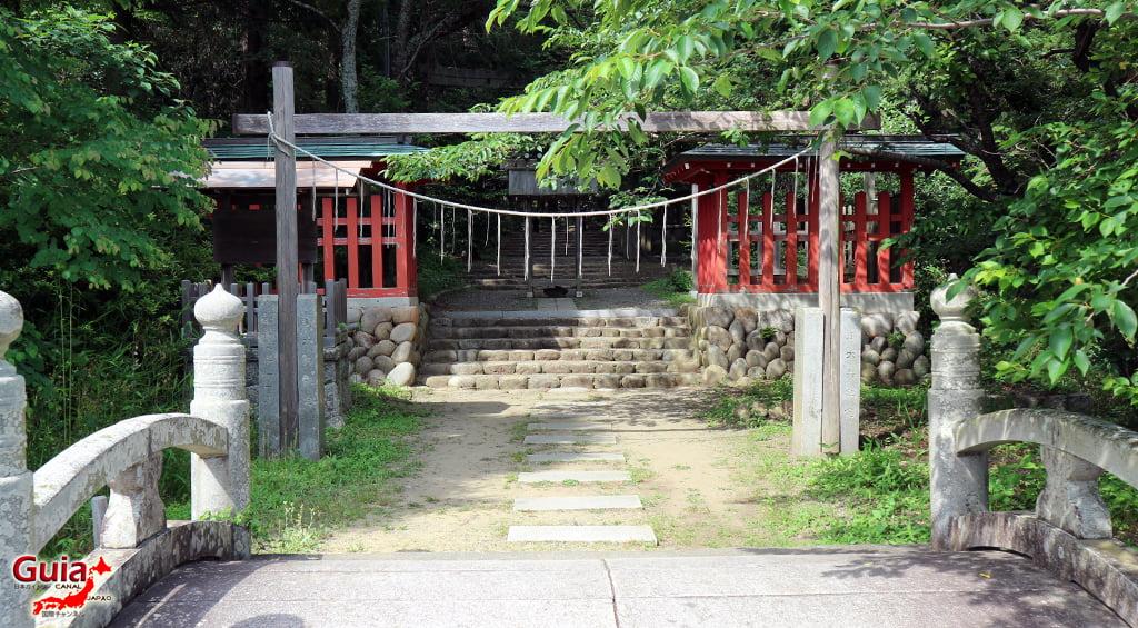 Garden Iris Kamo Hana-Shobu Toyohashi 42