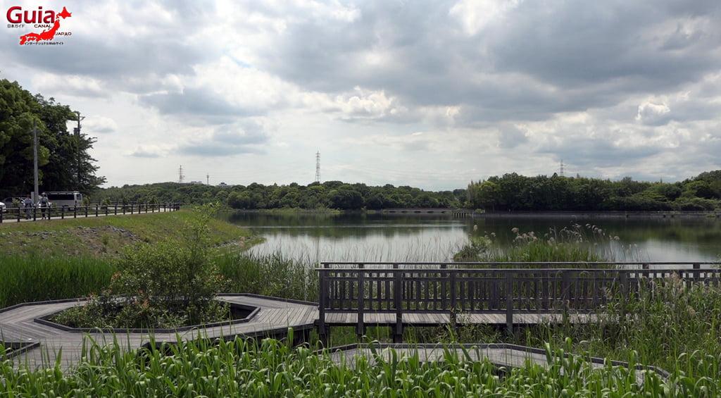 Chokushi Suihen Park 5