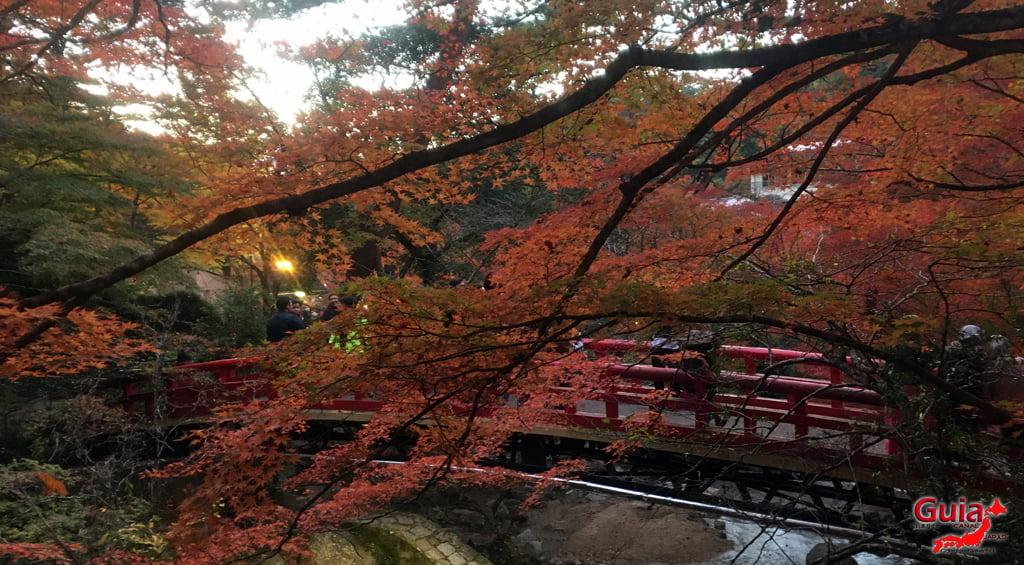 Seto - เทศกาลใบไม้เปลี่ยนสี 1