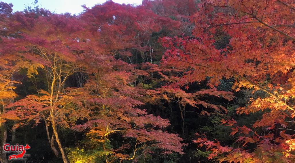 Seto - Festival das Folhas de Outono 3