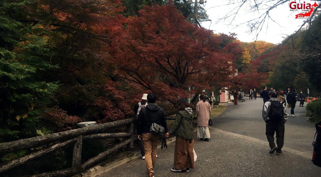 Seto - เทศกาลใบไม้เปลี่ยนสี 5