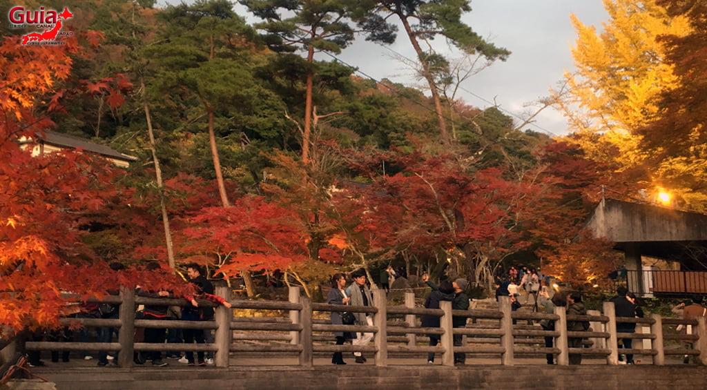 Seto - Festival das Folhas de Outono 6