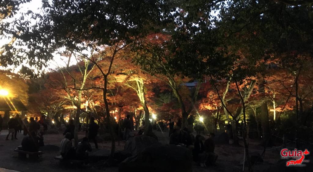 Seto - เทศกาลใบไม้เปลี่ยนสี 8