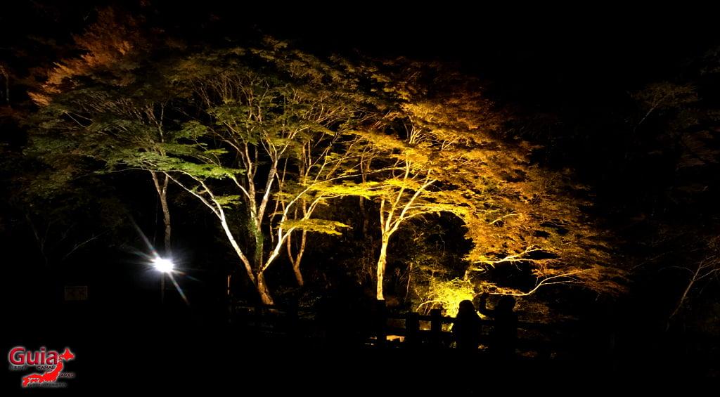 Seto - เทศกาลใบไม้เปลี่ยนสี 9