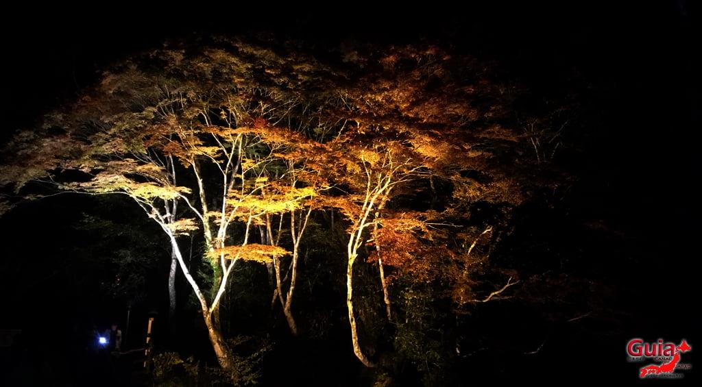 Seto - Festival das Folhas de Outono 10