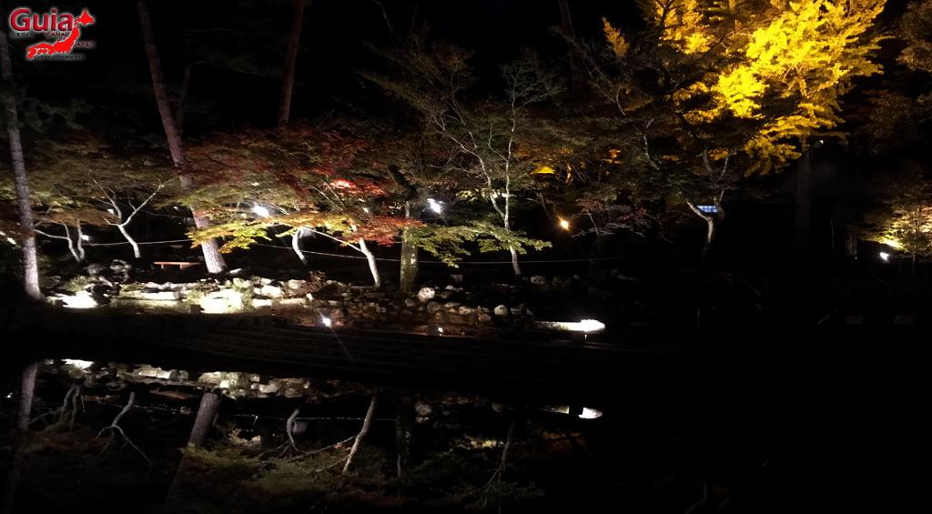 Seto - Festival das Folhas de Outono 11