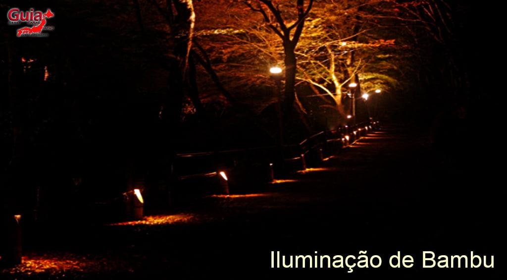 Parc Iwayado 98
