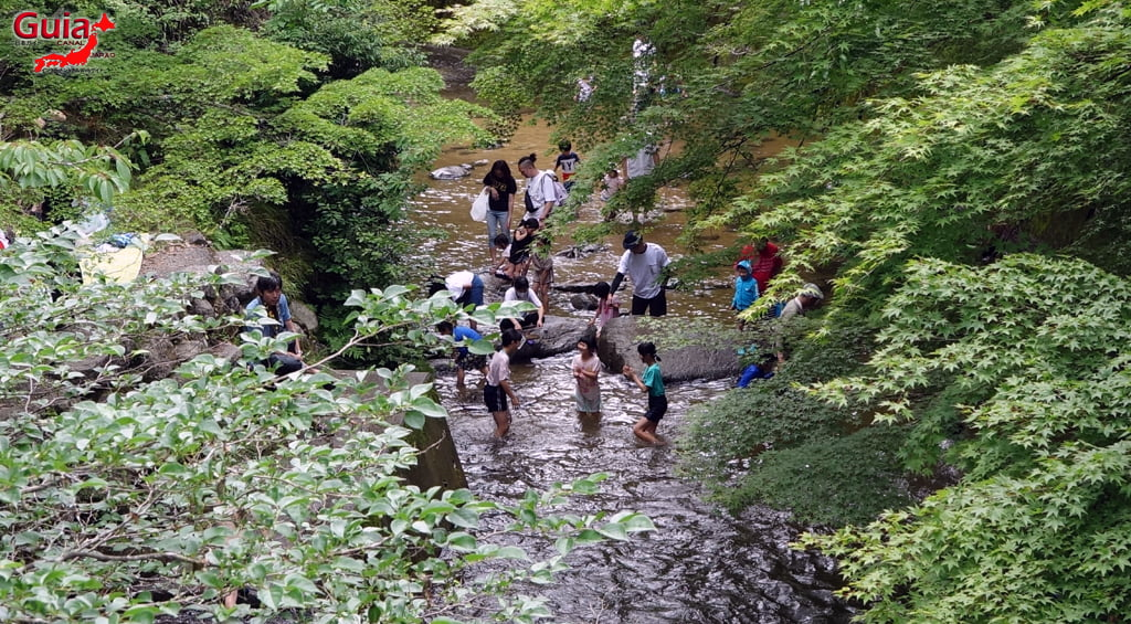 Iwaado پارک 7