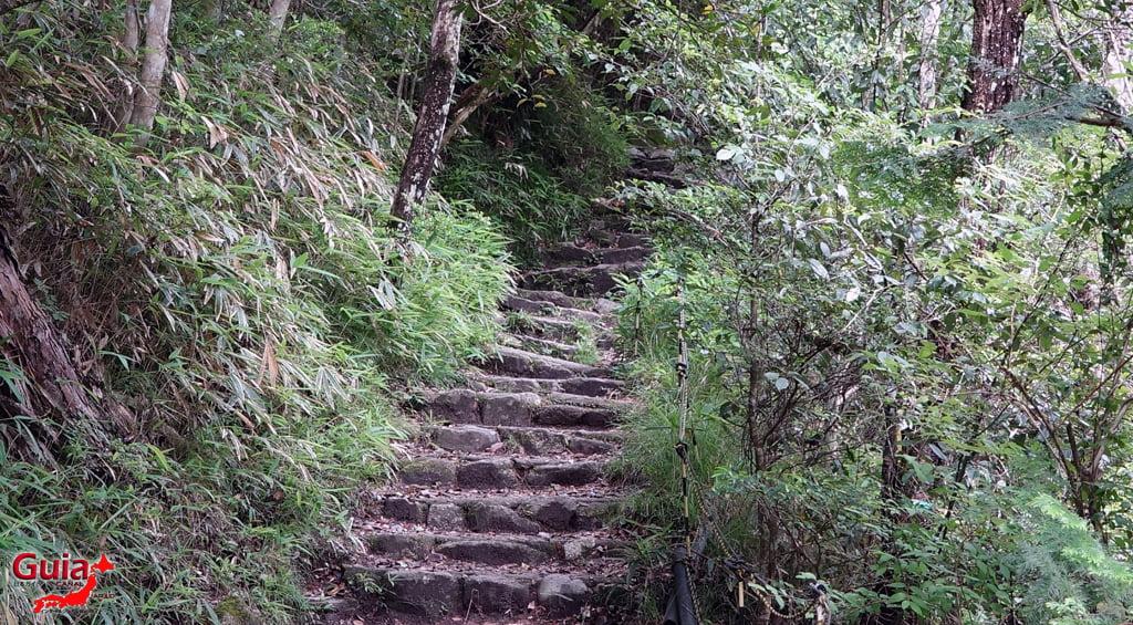 Parc Iwayado 60