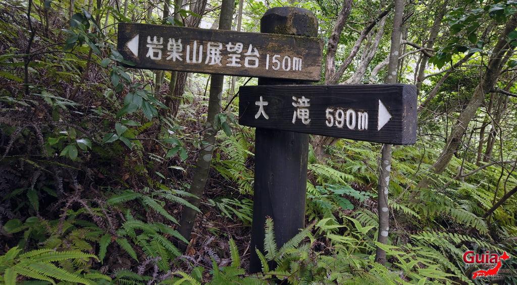 Iwaado پارک 50