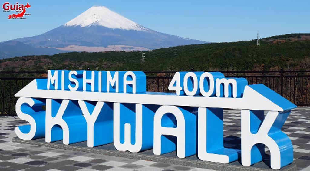 Mishima Sky Walk 1