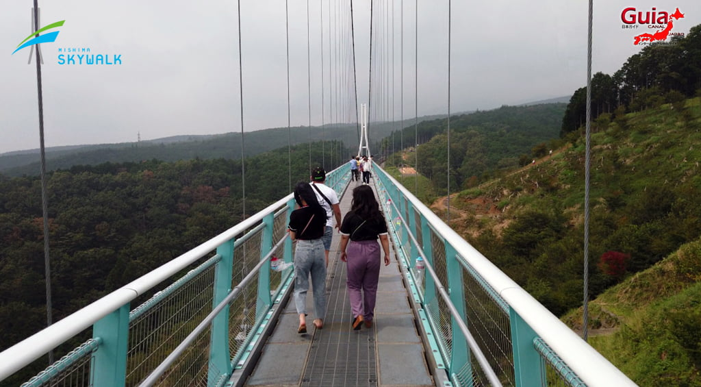 Mishima Sky Walk 9