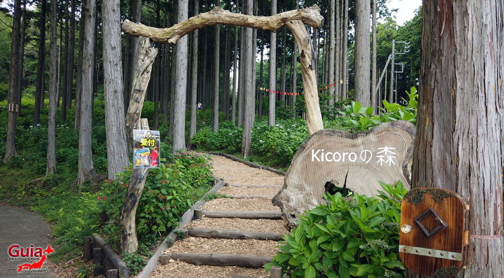 Mishima Sky Walk 79