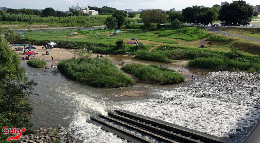 Kago River - Toyota 4