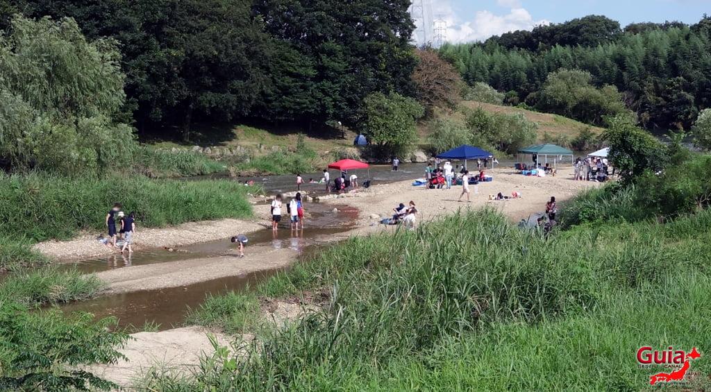 加哥河-丰田7
