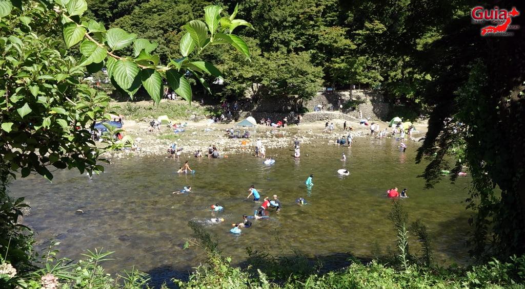 Tomoegawa River - Toyota 3