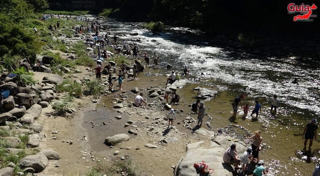 Tomoegawa River - Toyota 12