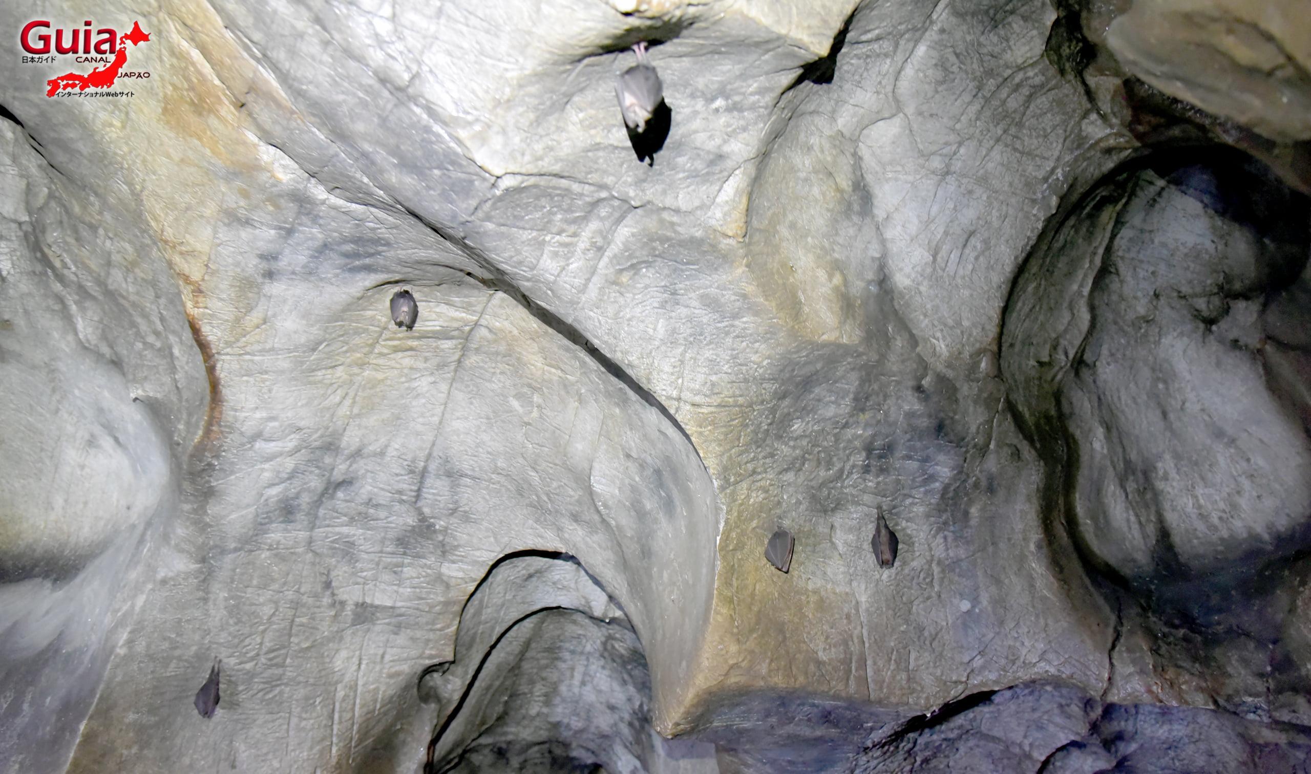 Caverna Suse Jaana 21