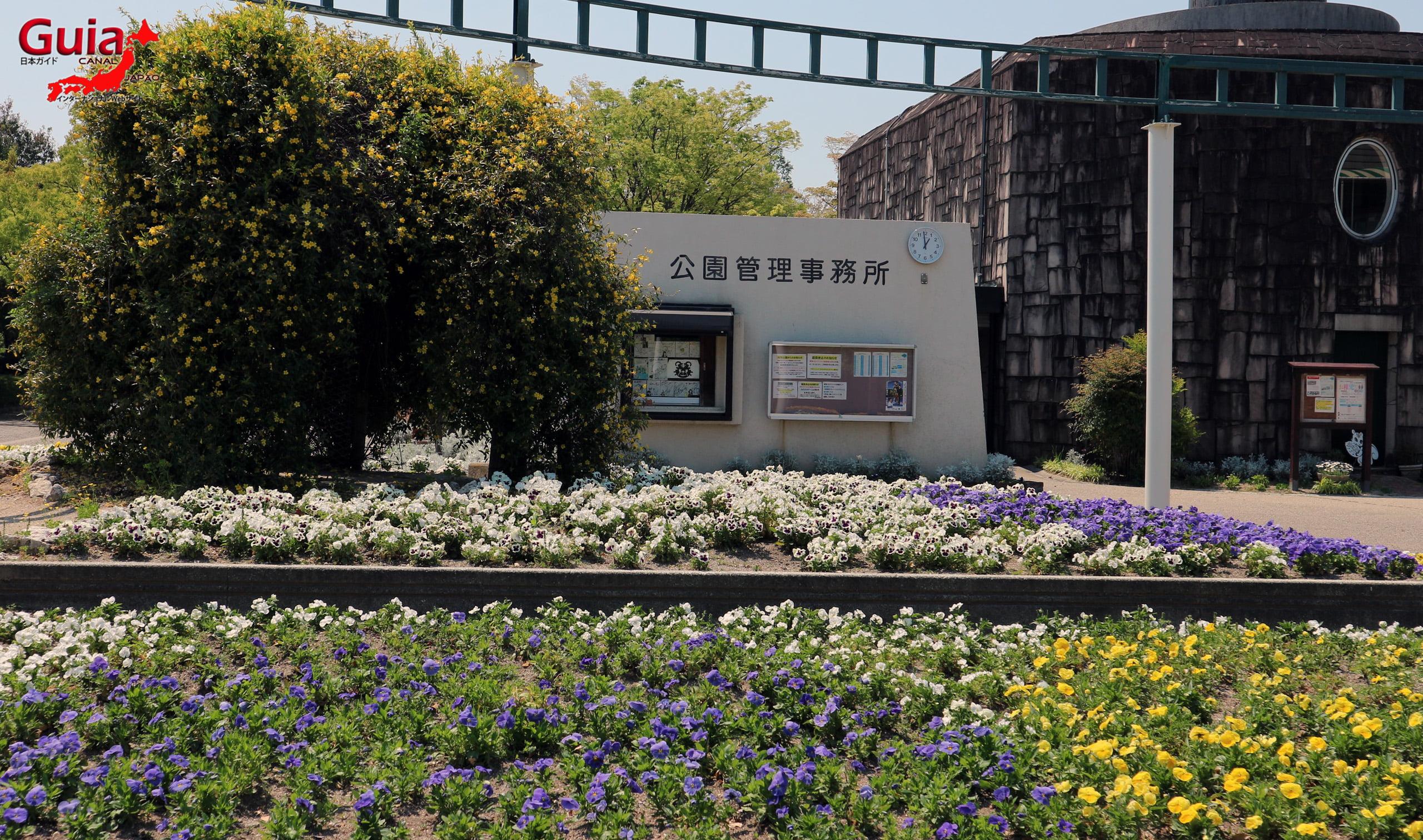 Parque Horiuchi - Anjo 6