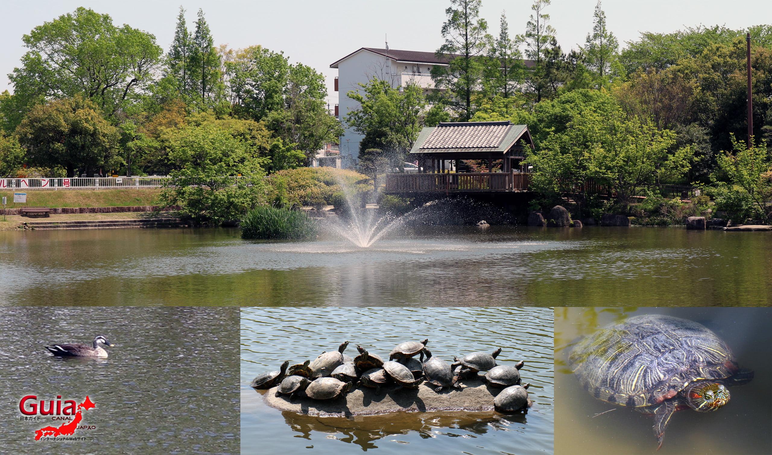 Parc Horiuchi - Ange 14