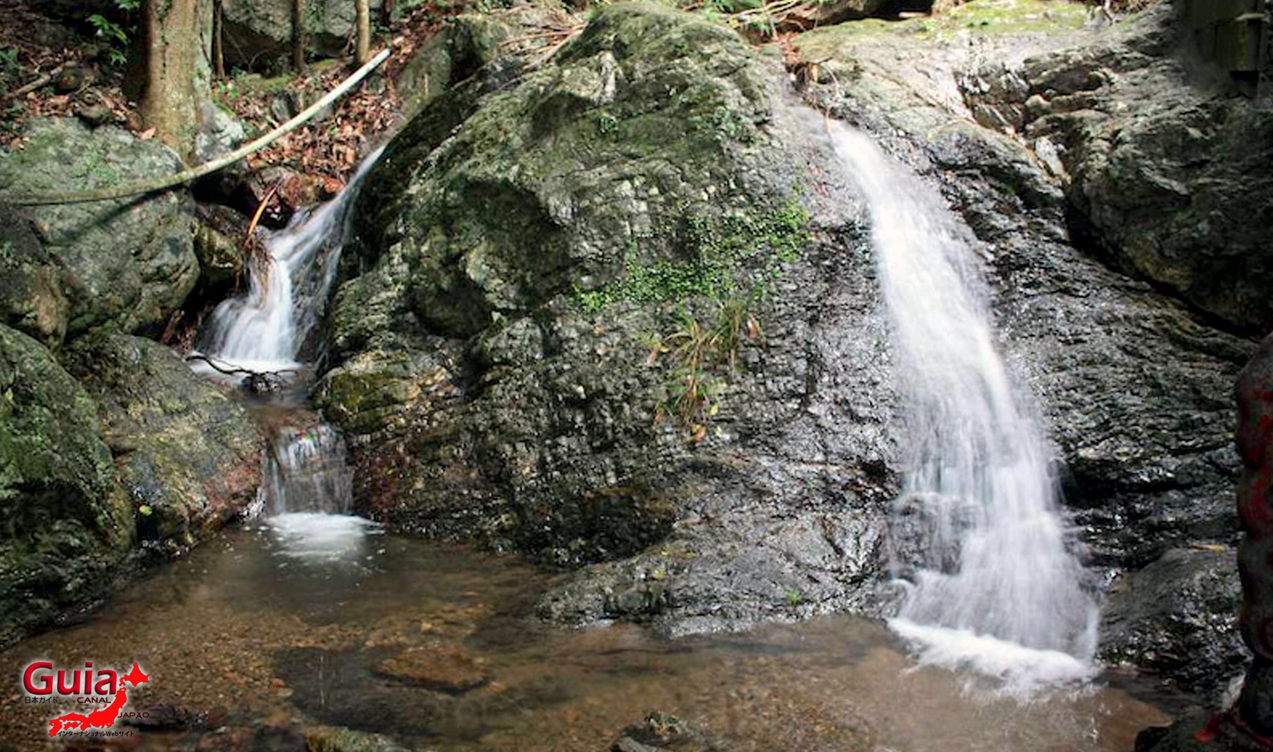 Cachoeira Tame – Toyohashi 6