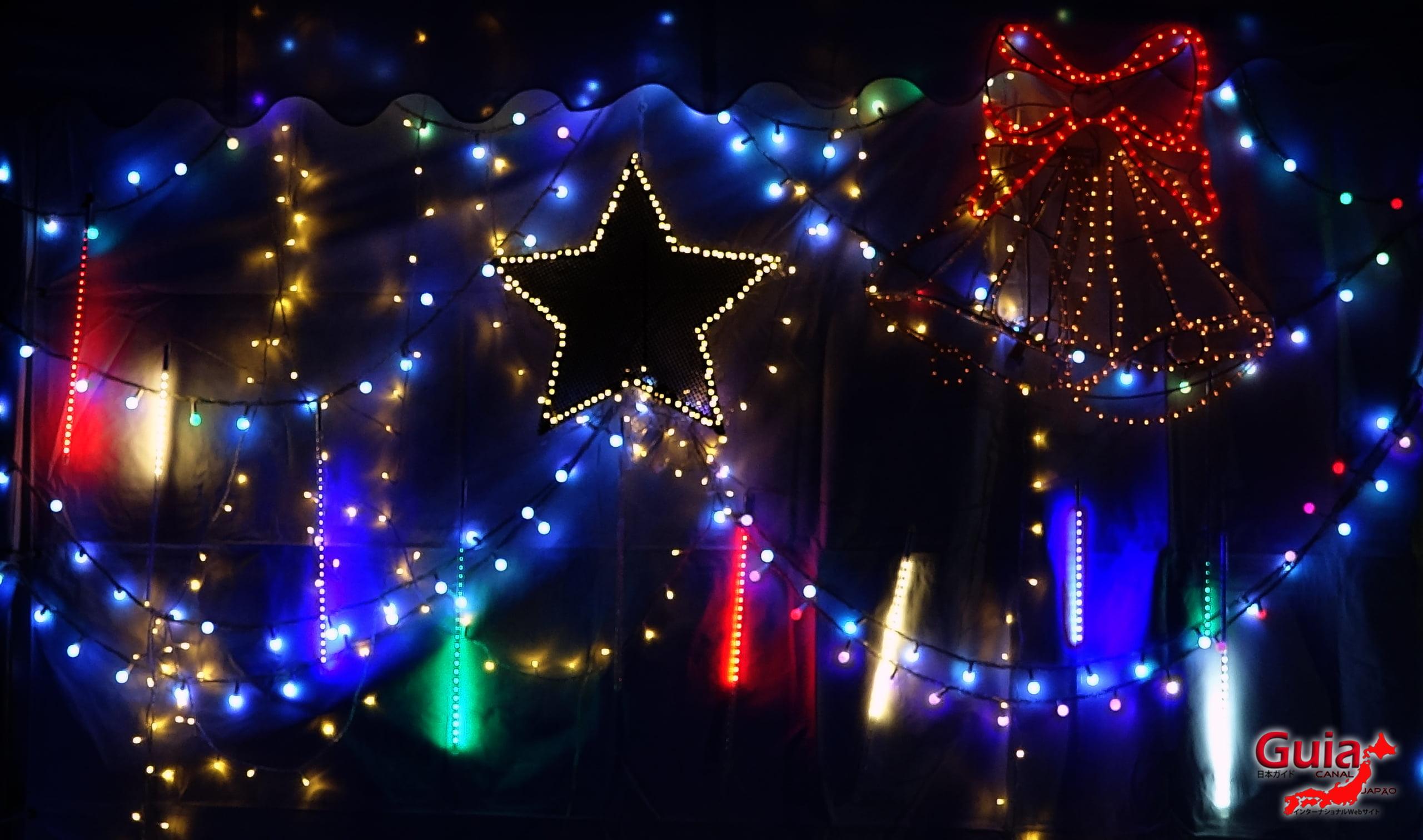 Chiryu - Зул сарын баярын гэрэлтүүлэг 2