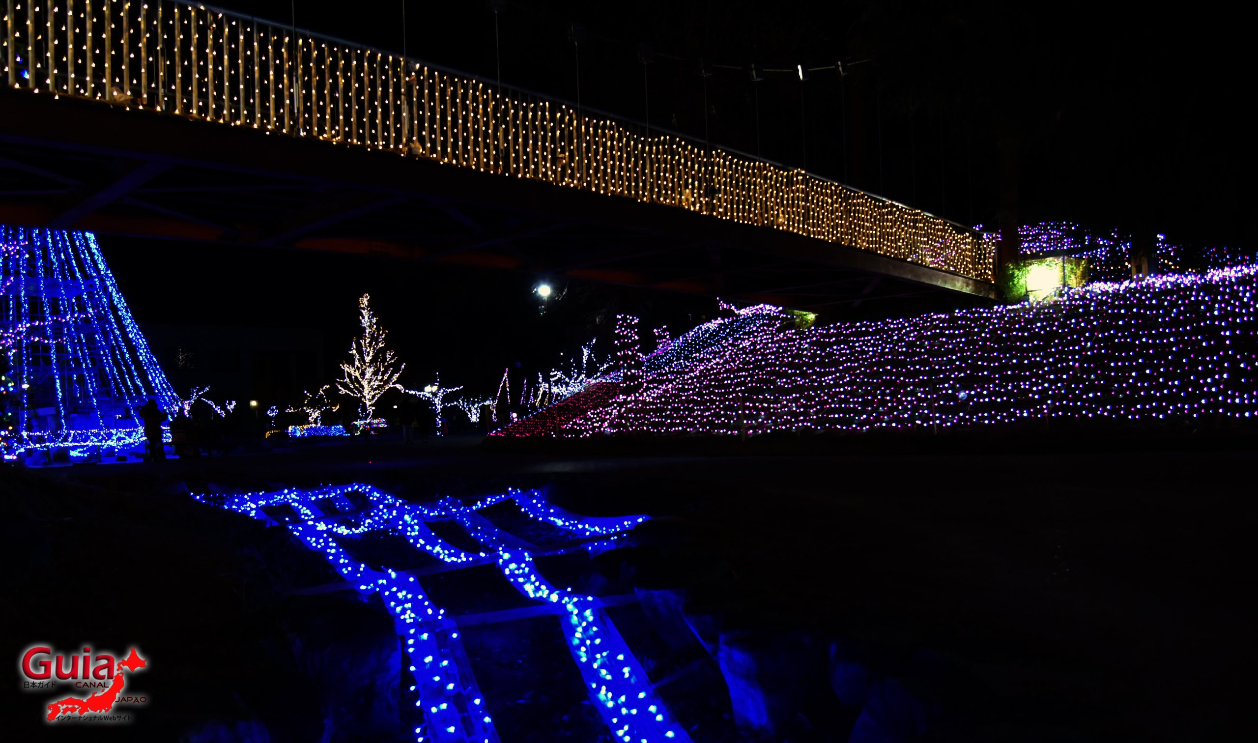 Chiryu - Зул сарын баярын гэрэлтүүлэг 4