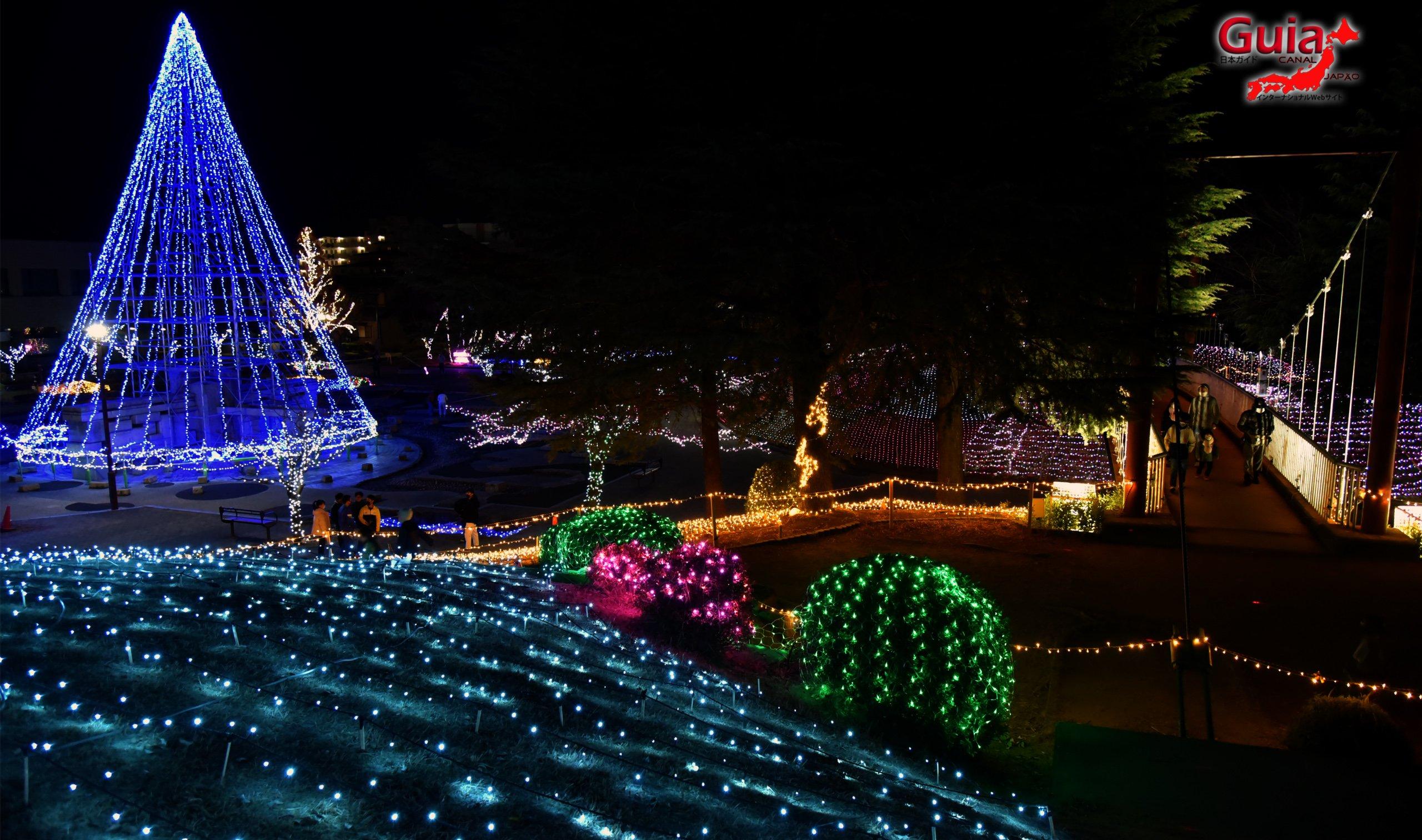Chiryu - Зул сарын баярын гэрэлтүүлэг 12