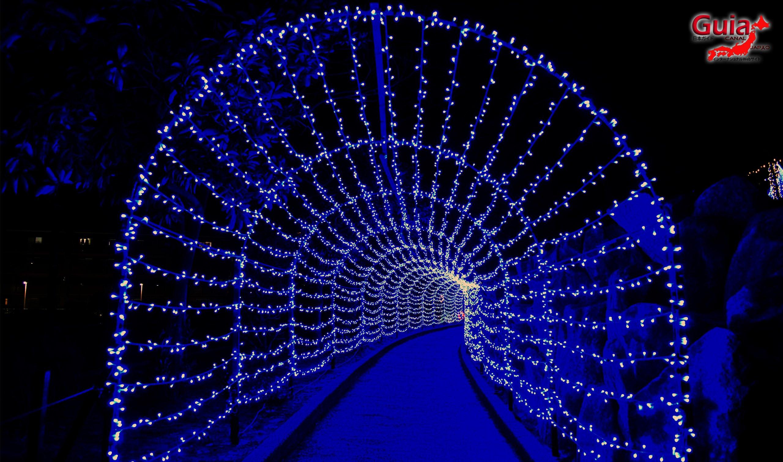 Chiryu - Зул сарын баярын гэрэлтүүлэг 16