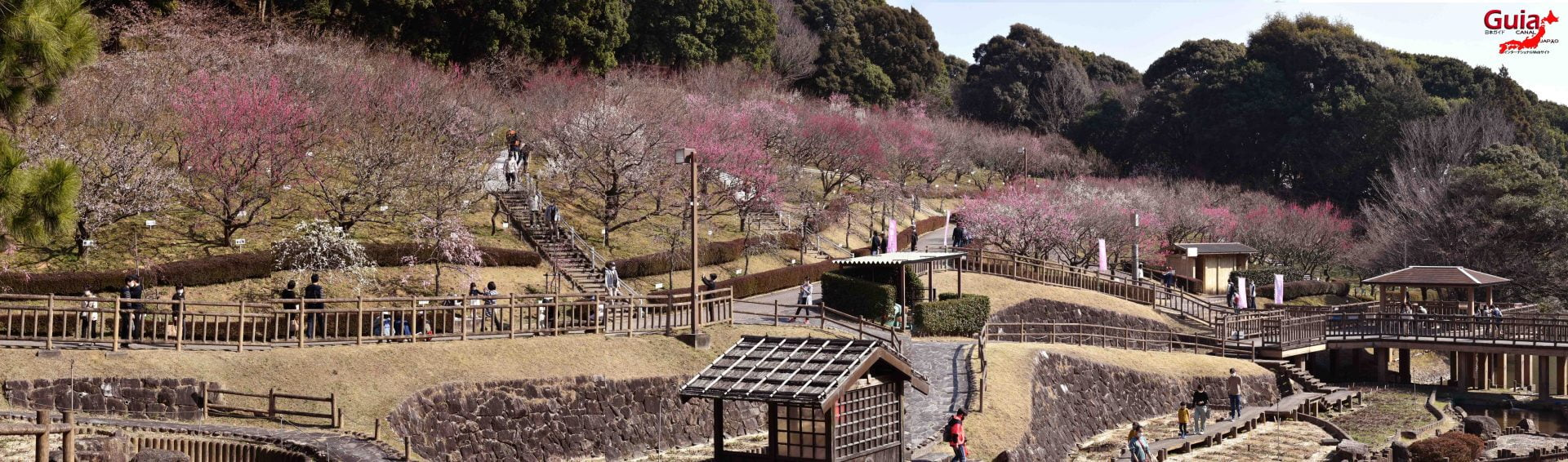 Festival Flor de Ameixa (Ume) - Parque Akatsukayama Toyokawa 1