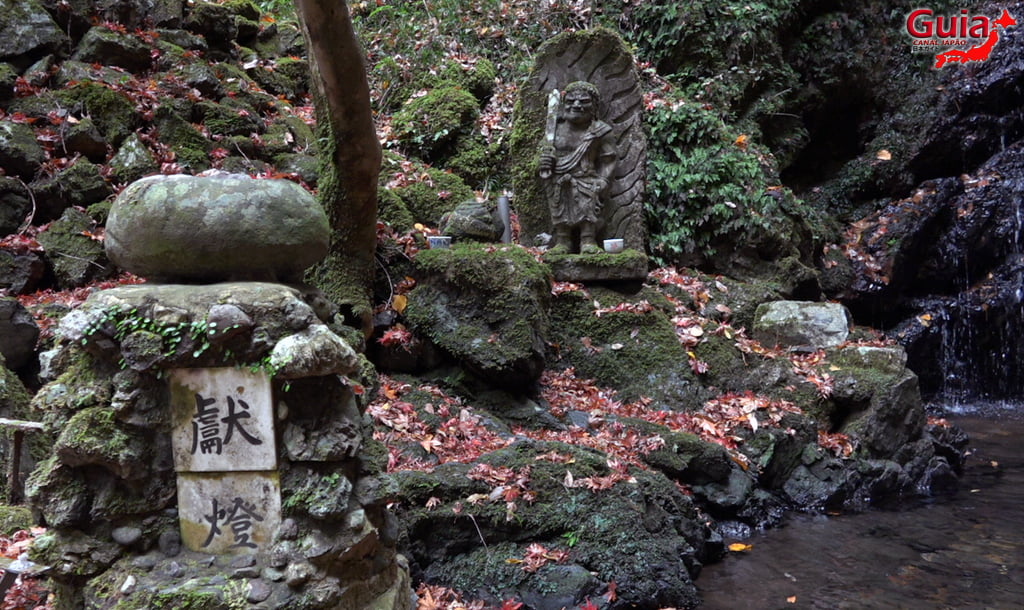 Cachoeira Iwamon 8