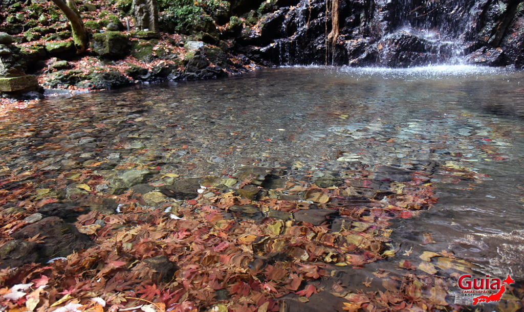 Cachoeira Iwamon 13