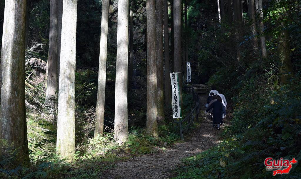 Cachoeira Iwamon 5