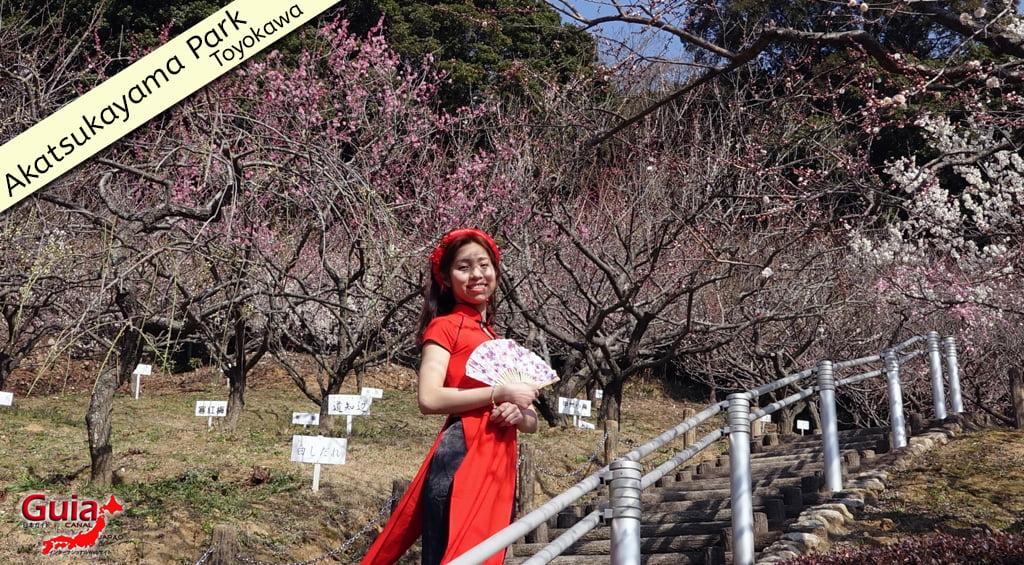 Galeria de fotos de Estrangeiros nos Jardim de Flores de Ameixa (Ume) 5