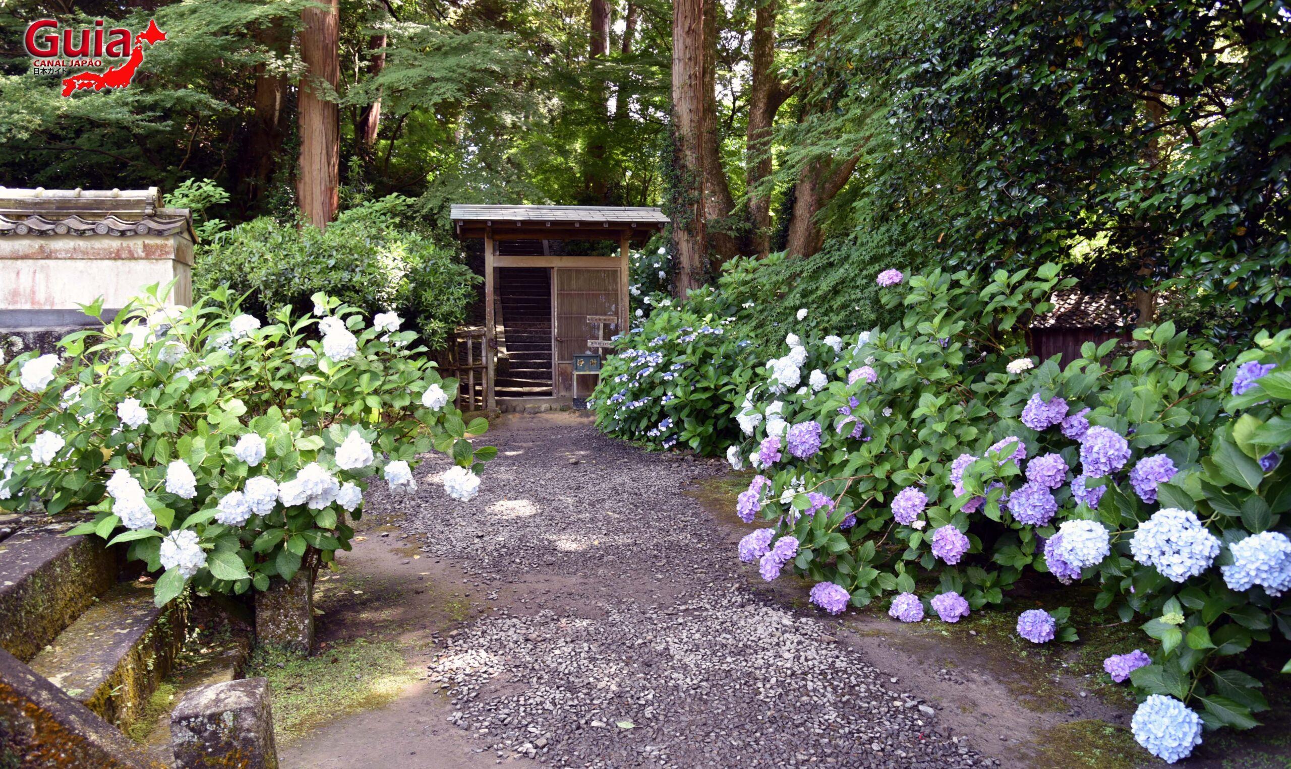 Festival Hortênsia do Templo Honko-ji 19