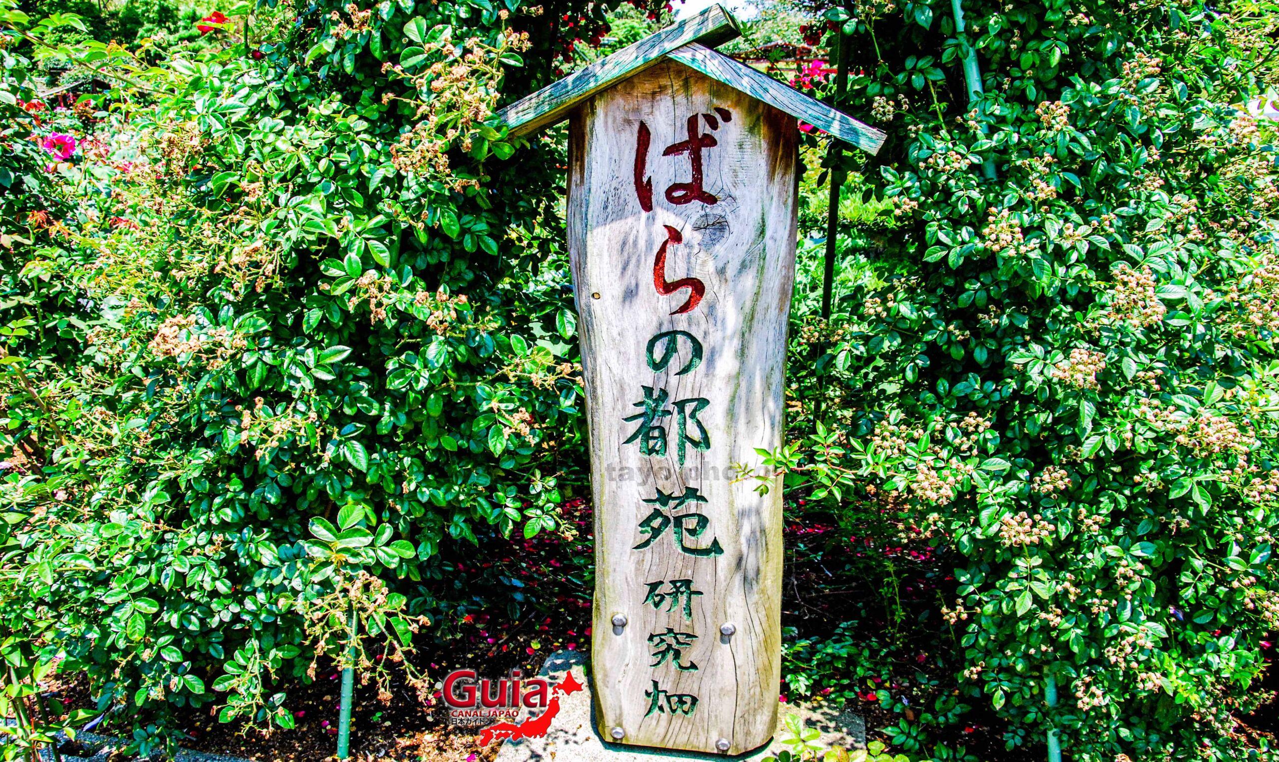 Jardim de Rosas - Bara no Miyako-en 2