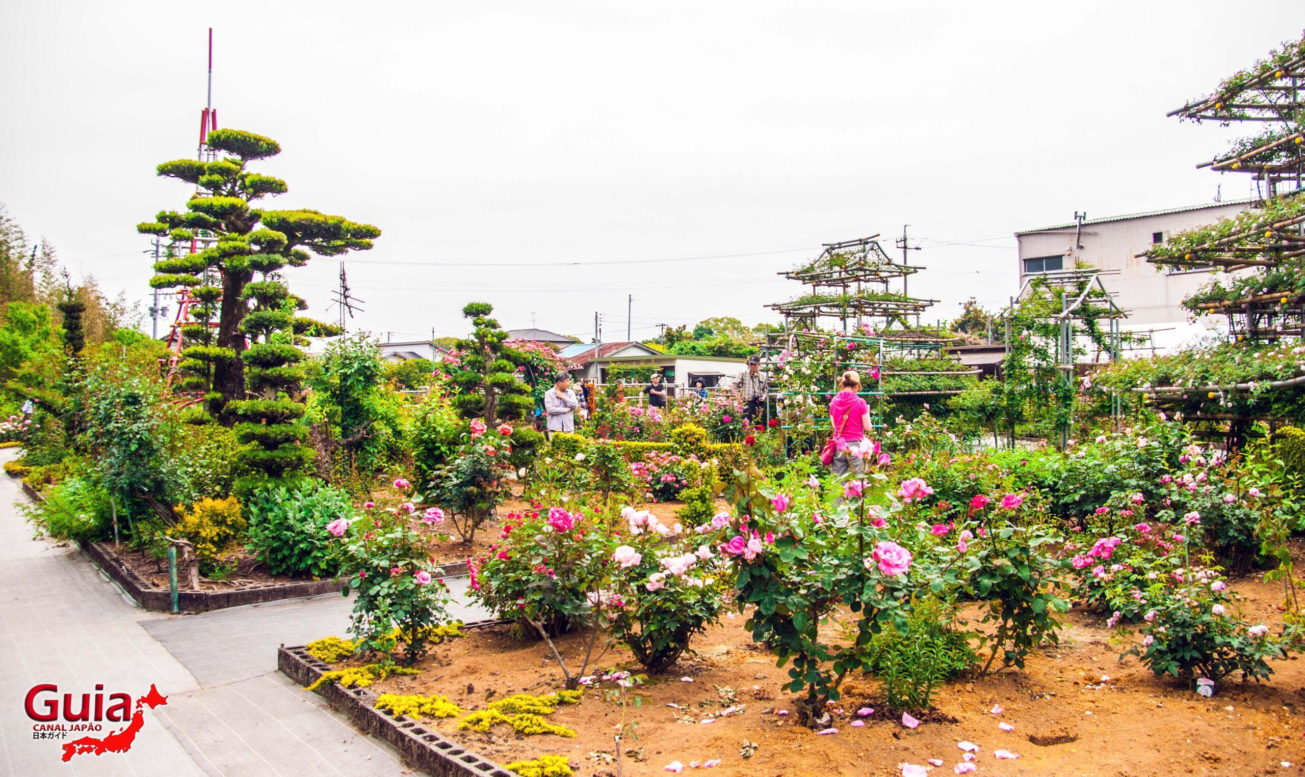 Jardim de Rosas - Bara no Miyako-en 4