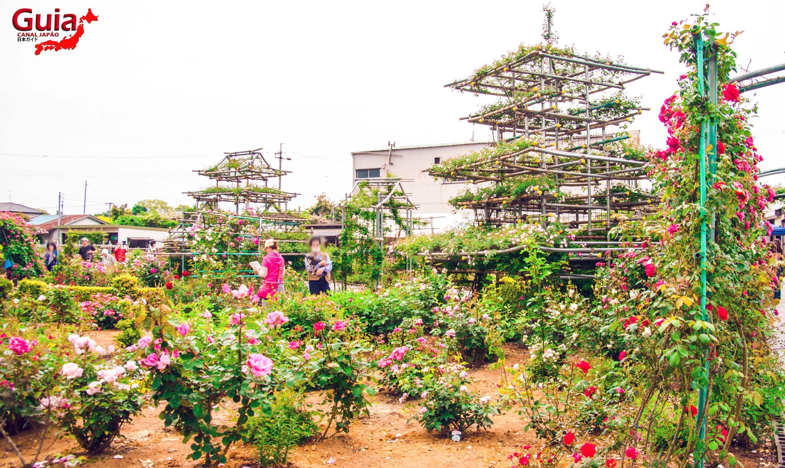 Jardim de Rosas - Bara no Miyako-en 5